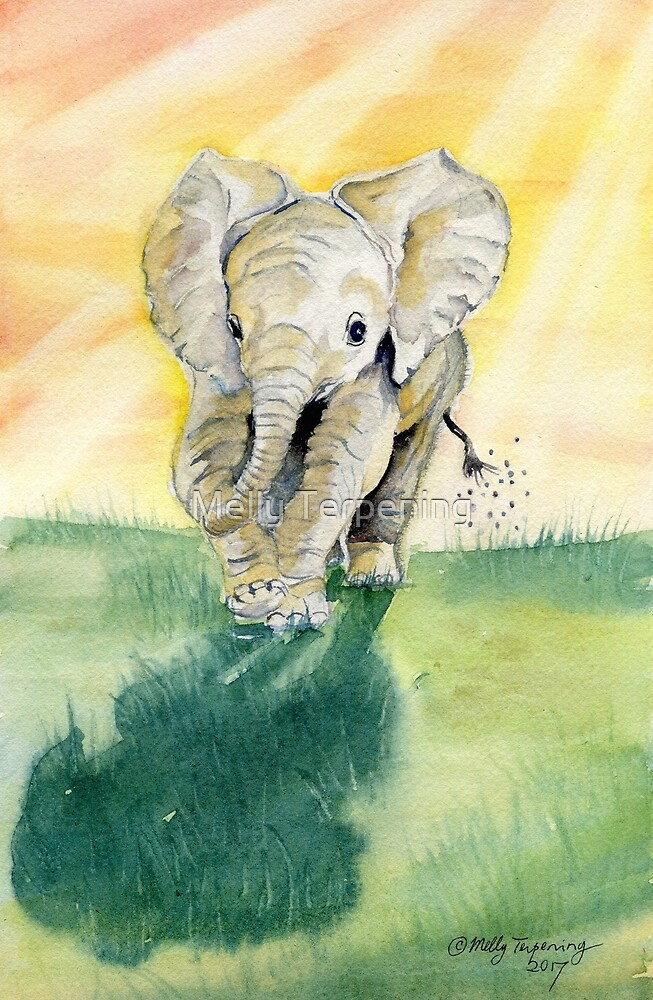 Colorful Baby Elephant by Melly Terpening