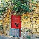 Red Door Blue Gate by Xandru