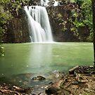 Cedar Ck. Falls by Tim Wootton
