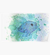 FISH SPLASH  Poster
