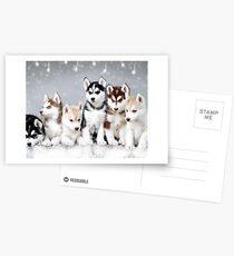 Christmas Siberian Husky Puppies Postcards