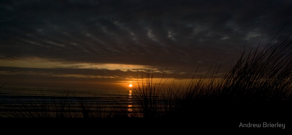 sunset through the grass by Andrew Brierley
