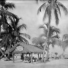 Jensen's Marina on Captiva Island, Florida by Bill Wetmore
