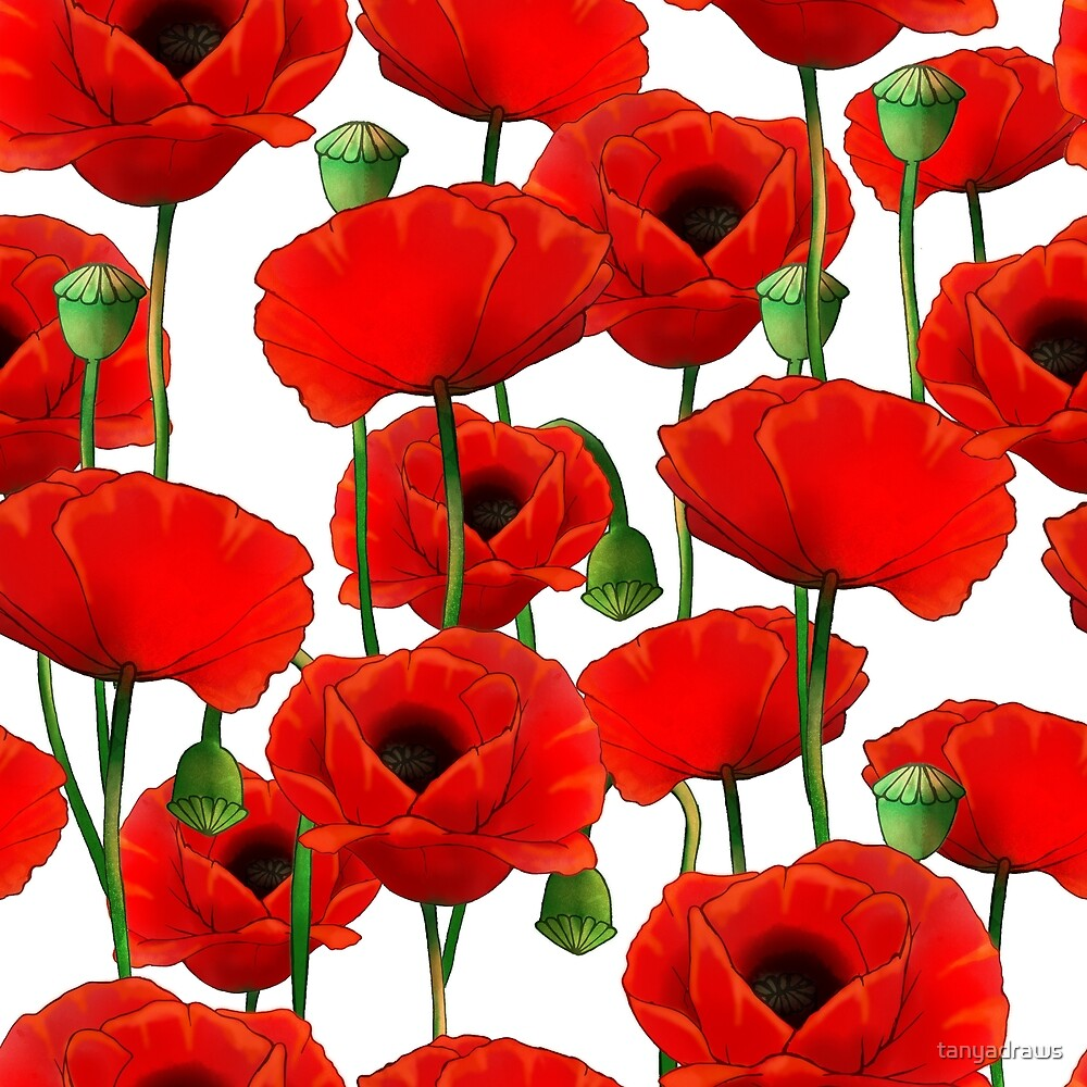 Poppy Pattern by tanyadraws