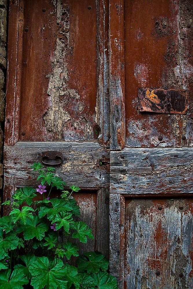 old door in San Quirico d,Orcia, Tuscany by maggiehughes