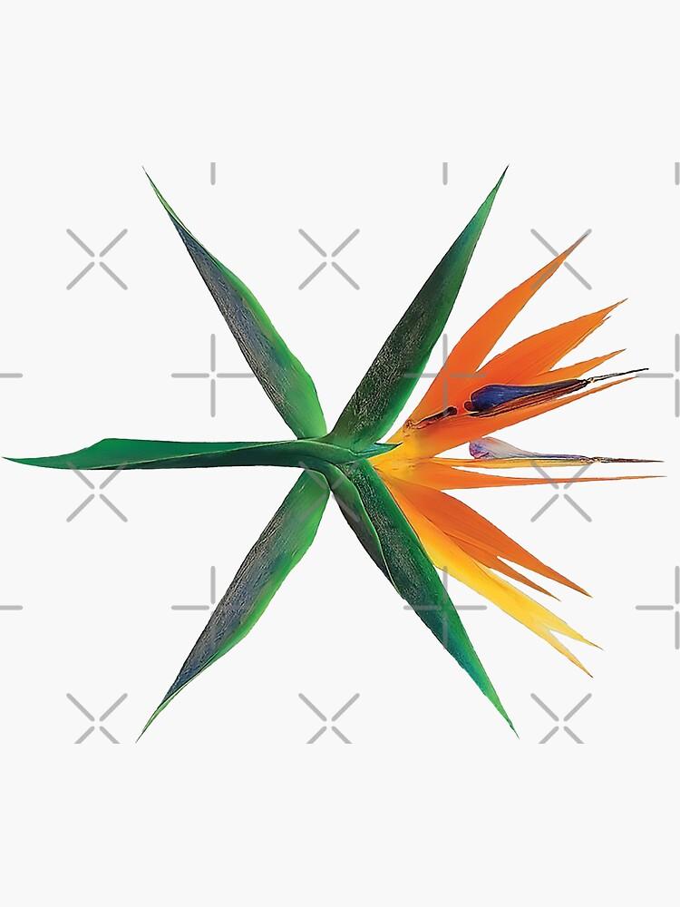 EXO von baekgie29