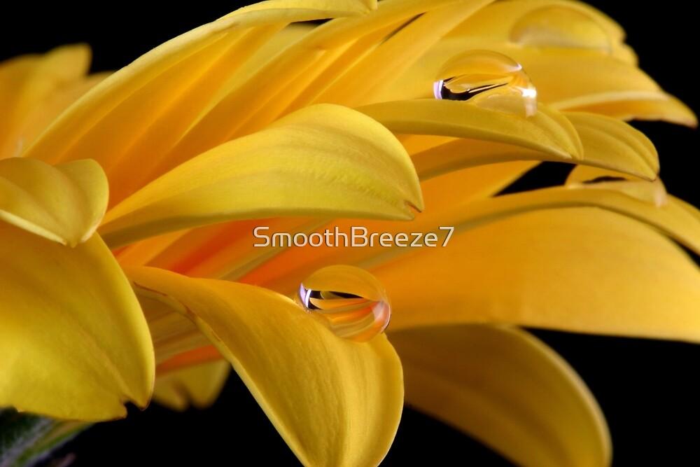 Drop, drop,.... by SmoothBreeze7