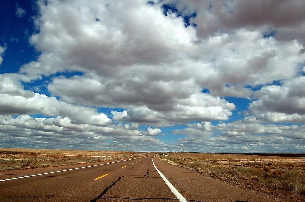 The Open Road near Winslow by GayleN