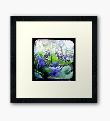 At the bottom of the Garden Framed Print