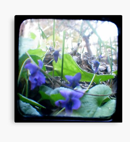 At the bottom of the Garden Canvas Print