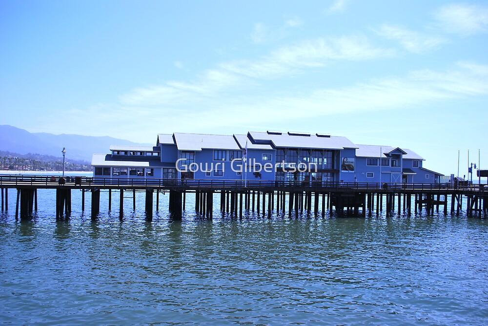 santa barbara pier by Gowri Gilbertson
