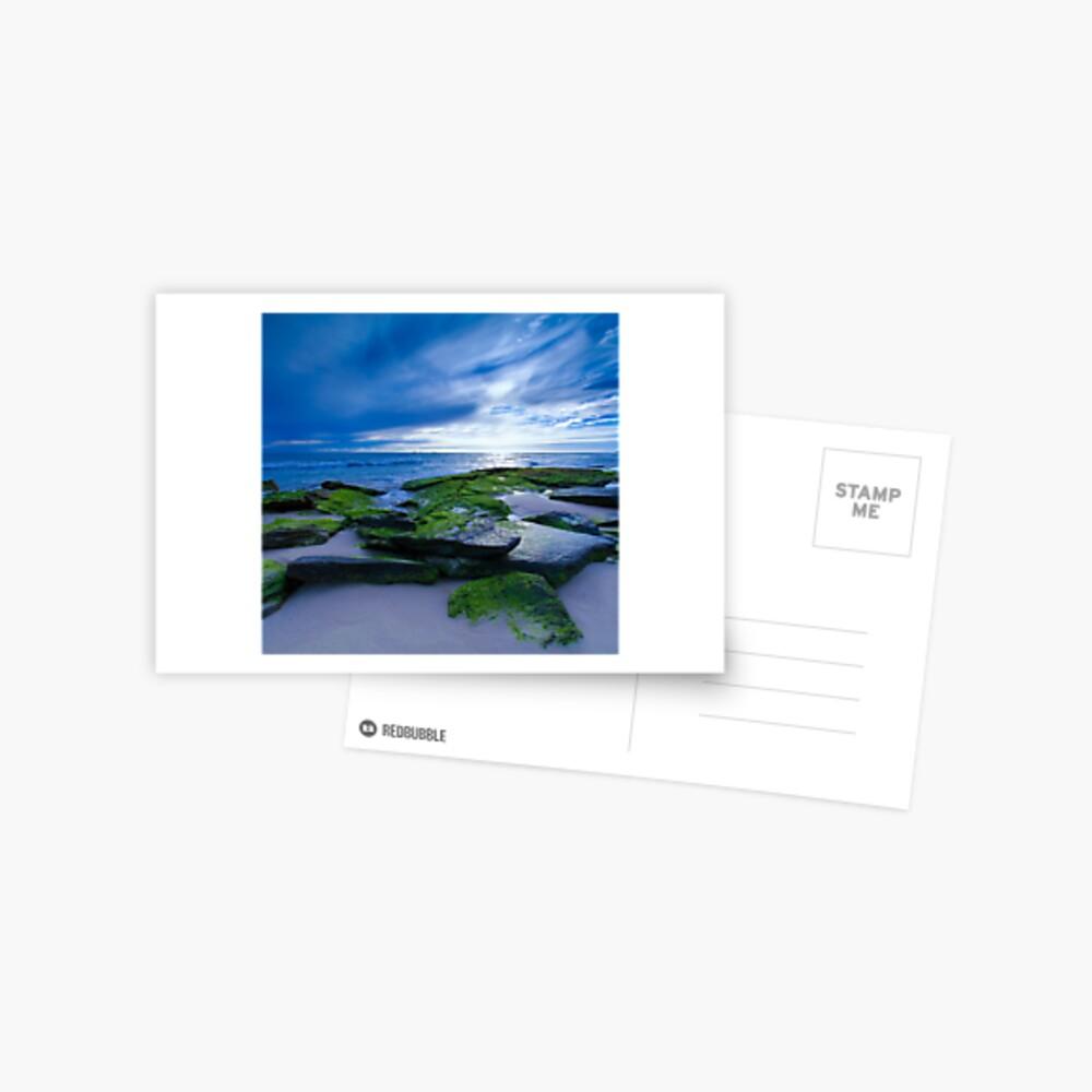 Green Carpet Postcard