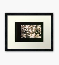 untitled #3: flowers Framed Print
