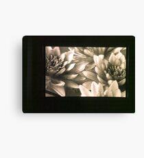 untitled #3: flowers Canvas Print
