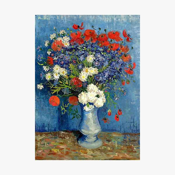 Vase With Cornflowers And Poppies Photographic Print
