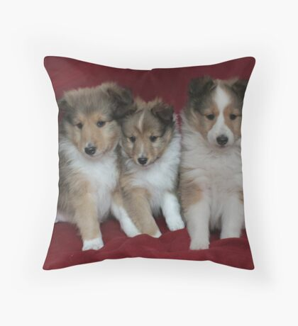 Puppies for Sale!!!! Throw Pillow