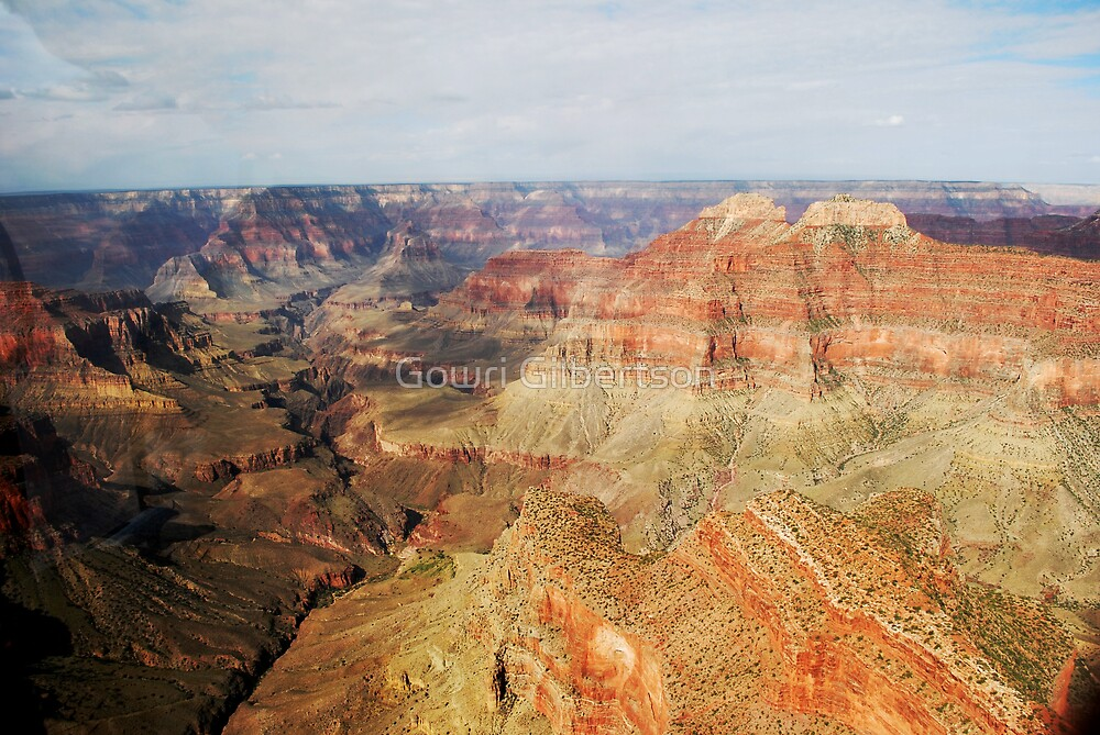 Grand Canyon - Helicopter view by Gowri Gilbertson