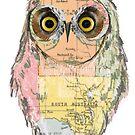 Whereyagarn Owl by annieclayton