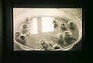untitled #2: bowl by Juilee  Pryor