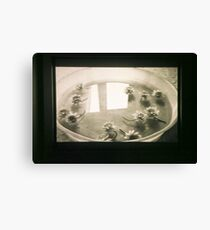 untitled #2: bowl Canvas Print