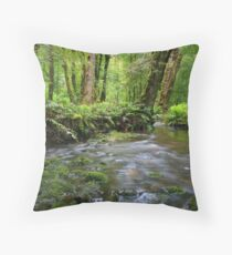 gondwana land Throw Pillow