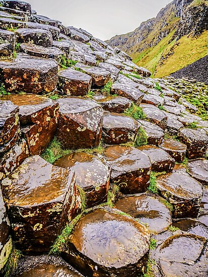 Ireland 'Rocks' - Giants Causeway, Northern Ireland #9 by Lexa Harpell