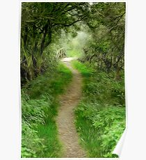 The path to Willow Bridge Poster
