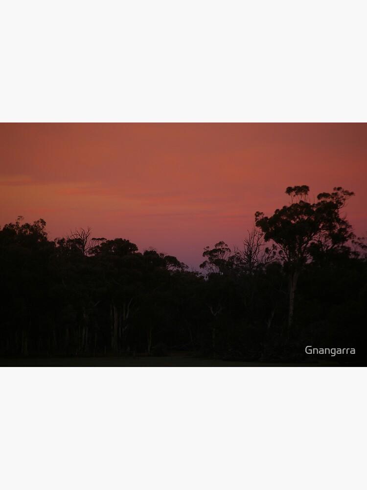 At dawns light by Gnangarra