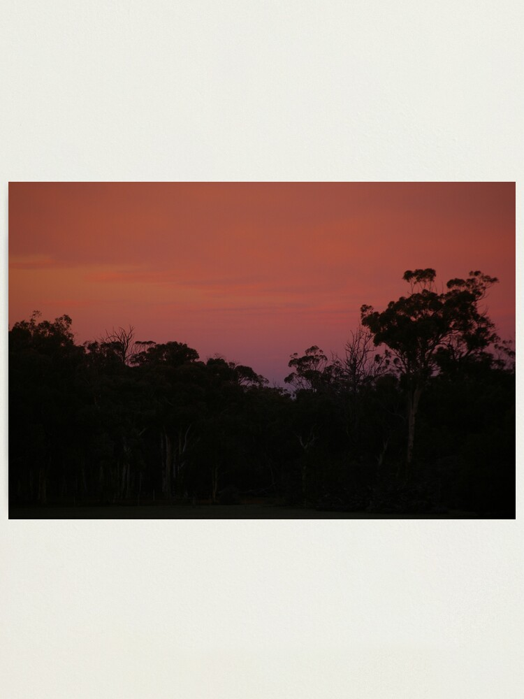 Alternate view of At dawns light Photographic Print