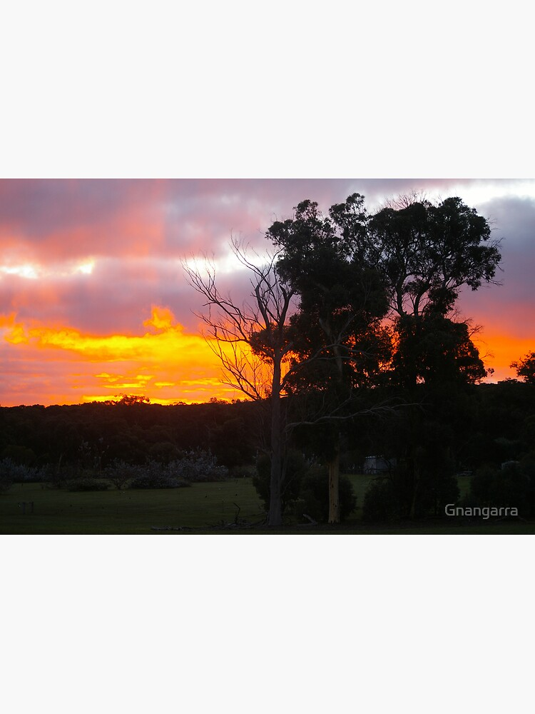 Fire in the sky by Gnangarra