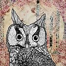 The Owl and the Moon by Bronia Sawyer