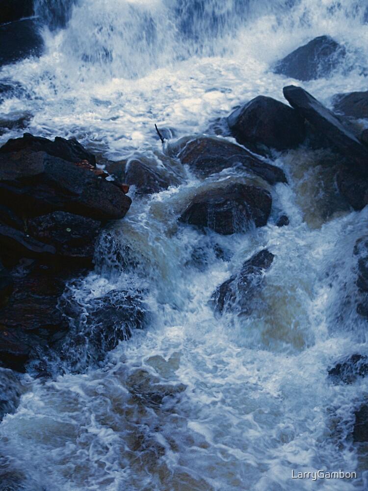 Below the Falls by LarryGambon