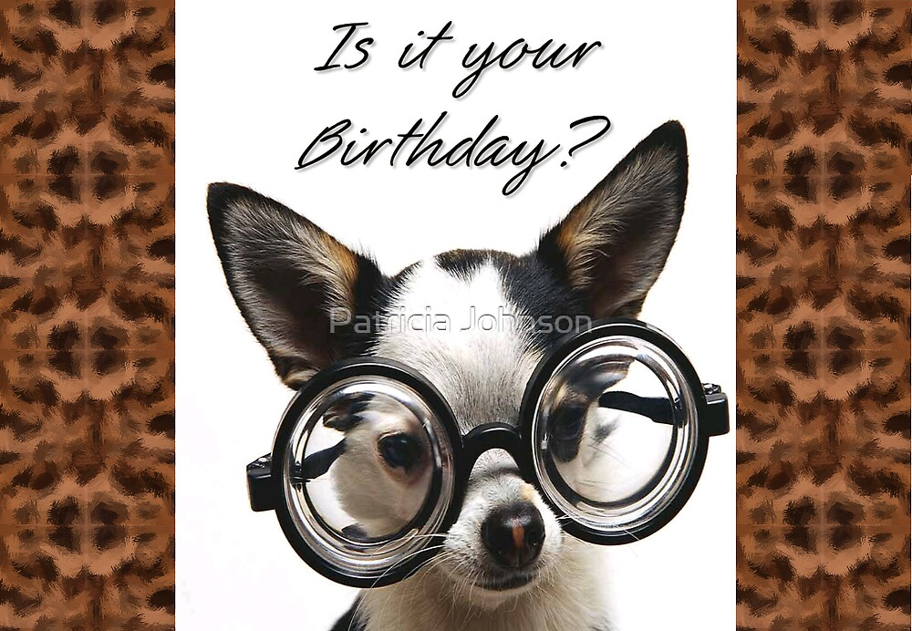Funny dog birthday card by patricia johnson redbubble funny dog birthday card by patricia johnson bookmarktalkfo Choice Image