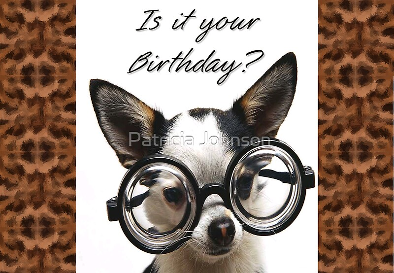 "funny dog birthday card"" by patricia johnson  redbubble, Birthday card"