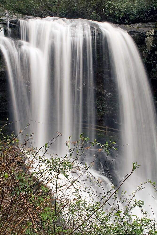Dry Falls by LarryGambon