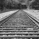 Tracks by Valeria Lee
