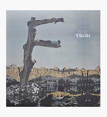 Feist - metals vinyl LP sleeve art - fanart Photographic Print