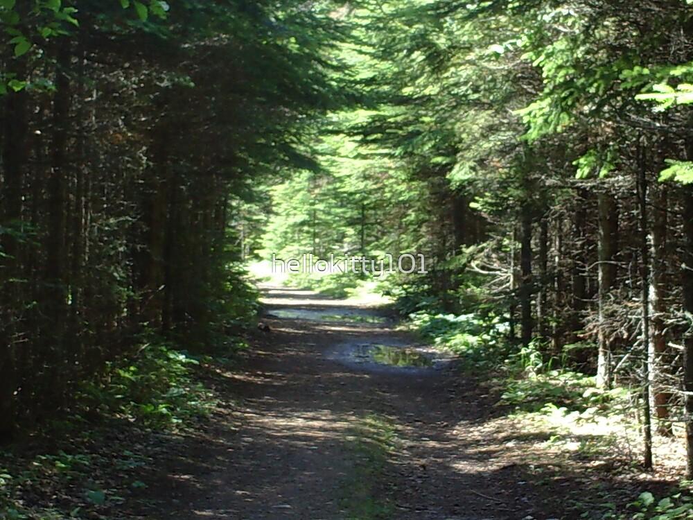 hidden trail by hellokitty101