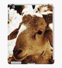 Big Sheep  iPad Case/Skin