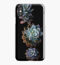 Triplet Succulent iPhone Case/Skin