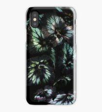 Green Coleus iPhone Case/Skin