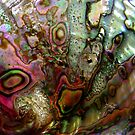 Mother of Pearl by Dana Roper