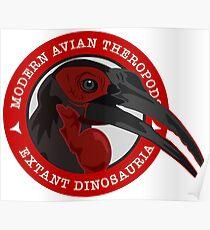 Modern Avian Theropods - Extant Dinosauria: Bucorvus leadbeateri Poster