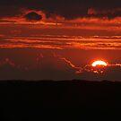 Backyard Sunset by BigD
