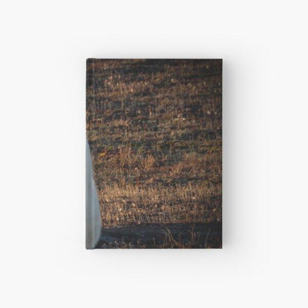 basking in the light Hardcover Journal