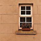 An Old School Window by Fara