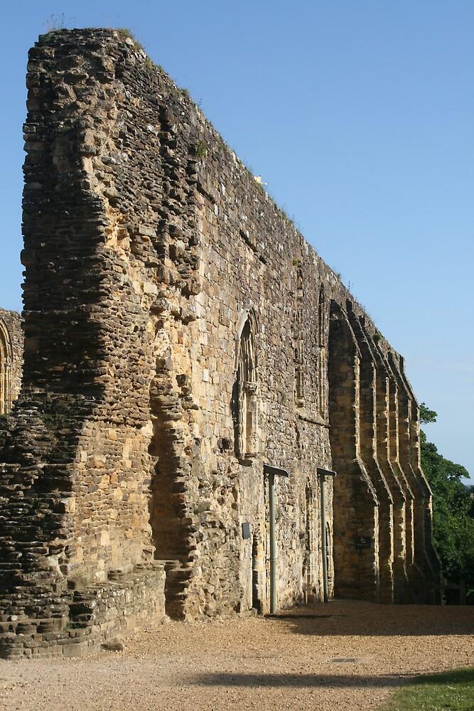 Battle Abbey by jonathonlyons