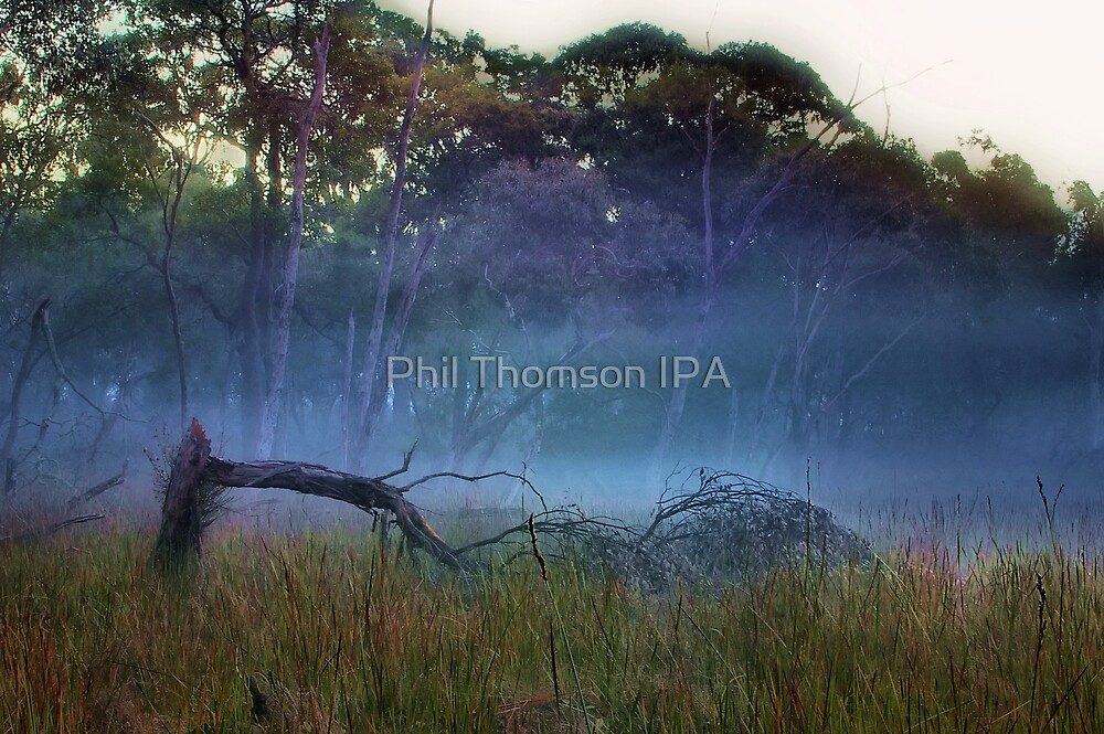 """A Break in the Fog"" by Phil Thomson IPA"