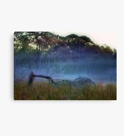 """A Break in the Fog"" Canvas Print"