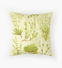 HD Vintage flowery bouquet design number 9 ~ Throw Pillow